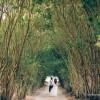 Casamento Beatriz e Vinicius-028